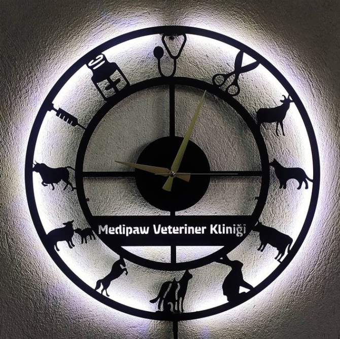 Veteriner Kliniğine Özel Ledli Metal Duvar Saati